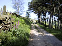 The Road to Laithe, Hardcastle Crags