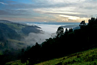 A Sea of Mist - Crimsworth Dean