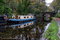 Autumn on the Canal - October